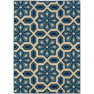 Marilee Blue/White Indoor/Outdoor Area Rug
