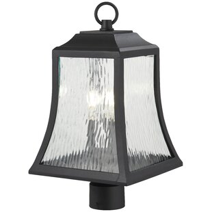 Dunton Outdoors 3-Light Lantern Head by Charlton Home