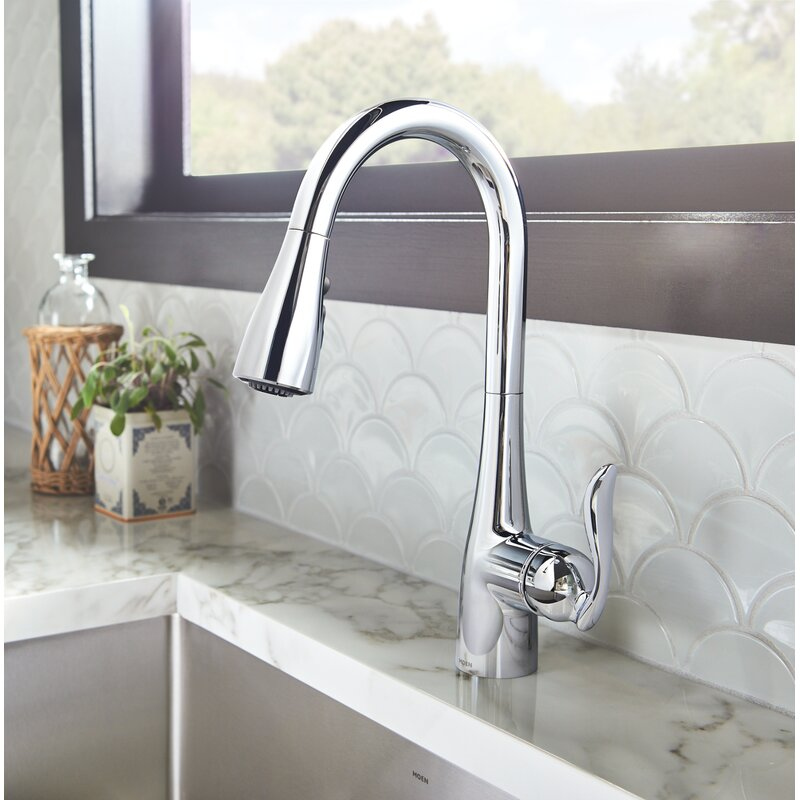 arbor pull down single handle kitchen faucetwith duralock and reflex