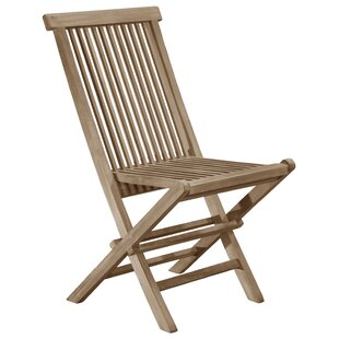 Baek Folding Garden Chair (Set Of 2) By Sol 72 Outdoor