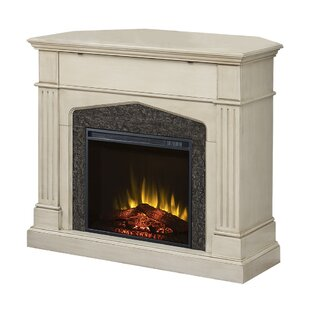 Bolte Infrared TV Stand with Fireplace by Astoria Grand