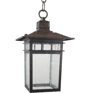 Charlton Home Lenhardt Outdoor Hanging Lantern