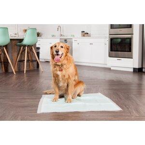Neat 'n Dry Premium Pet Training Pad
