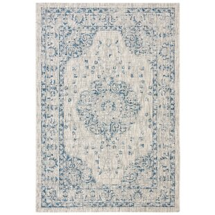 Nataly Gray Indoor/Outdoor Area Rug