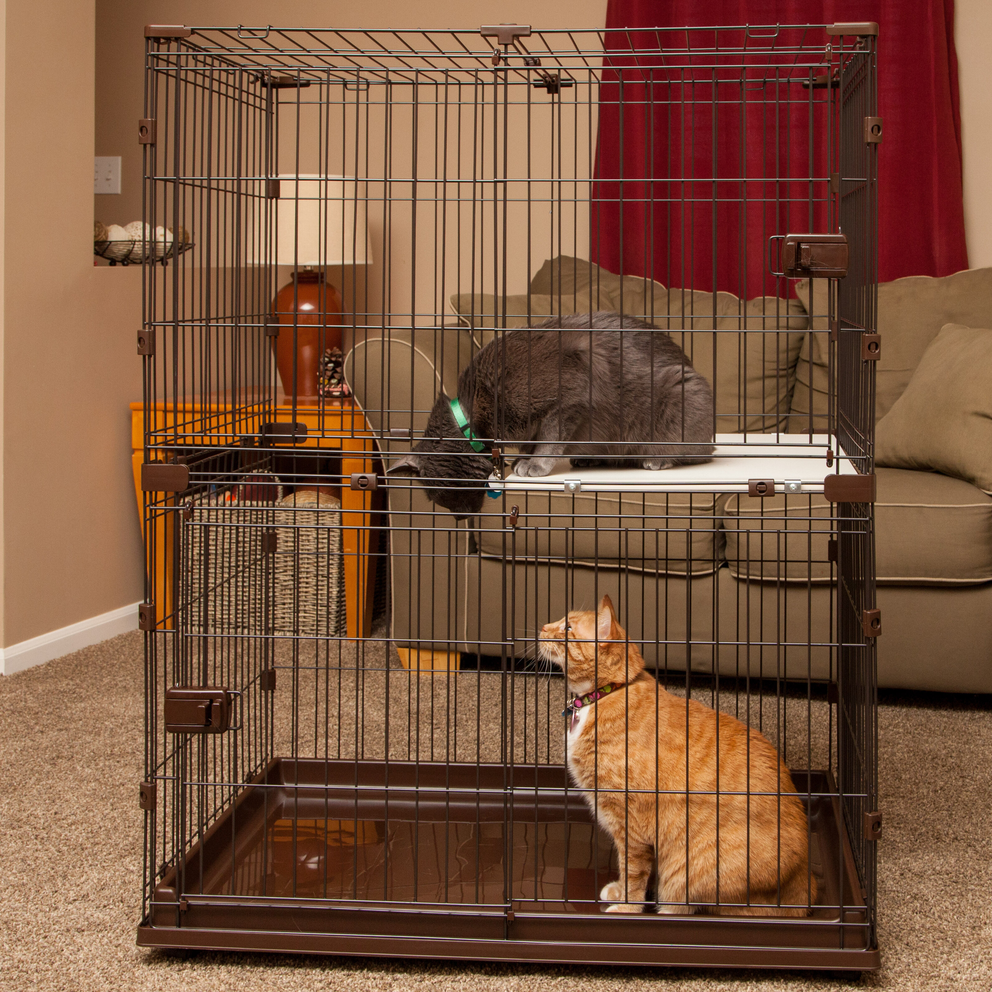 Cat Cage Hammock | Wayfair