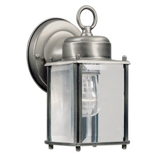 Sparland 1-Light Outdoor Wall Lantern