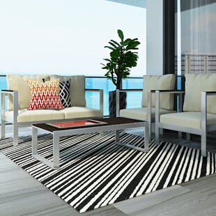 Searching for Shaun Black Area Rug ByWade Logan