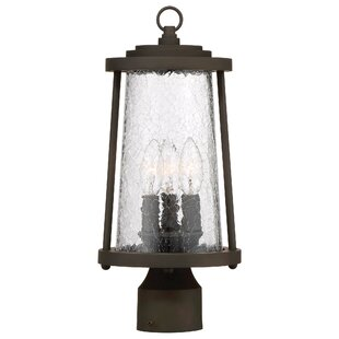 Creissant 3-Light Lantern Head By Darby Home Co Outdoor Lighting