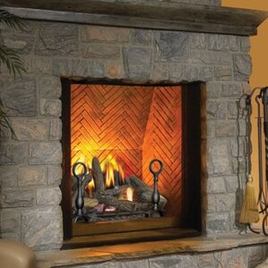 gas wall fireplaces. The Dream Direct Vent Wall Mounted Natural Gas Fireplace Fireplaces You ll Love  Wayfair