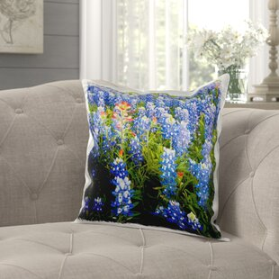 Sagamore Texas Bluebonnet Flowers in Bloom, Central Texas, USA Pillow Cover