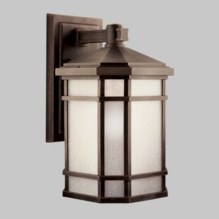 Loon Peak Robles 1-Light Outdoor Wall Lantern