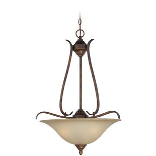 Darby Home Co Pottersmoor 3-Light Bowl Pendant