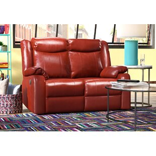 Latitude Run Roudebush Double Reclining Loveseat