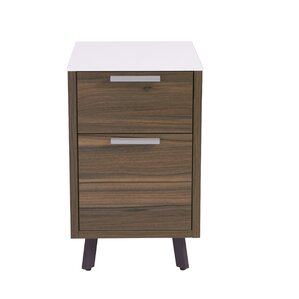 Barkeyville 2 Drawer File Cabinet