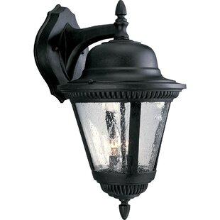 Alcott Hill Triplehorn 2-Light Metal Wall Lantern