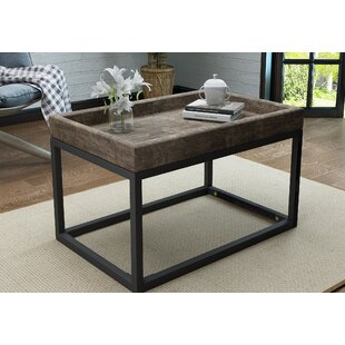 Fenske Framed Coffee Table with Tray Top
