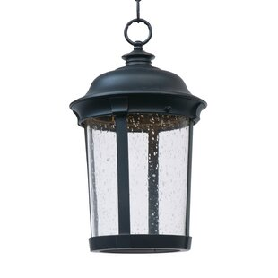 Darby Home Co Sandusky 1-Light Outdoor Hanging Lantern