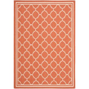 Larson Orange Indoor/Outdoor Area Rug