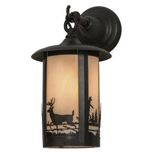Affordable 1-Light Outdoor Wall Lantern By Meyda Tiffany