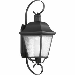 Alcott Hill Triplehorn 1-Light Wall Lantern