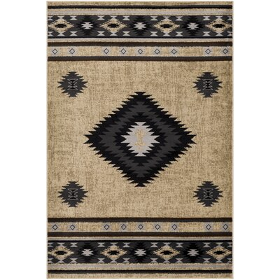 Black Southwestern Rugs You Ll Love In 2020 Wayfair