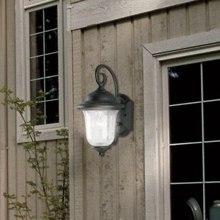 Naumann 1-Light Outdoor Wall Lantern