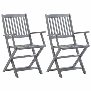 Bogdan Folding Garden Chair (Set Of 2) By Brambly Cottage