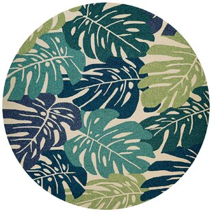 Totterdell Hand-Knotted Green  Indoor/Outdoor Area Rug by Beachcrest Home