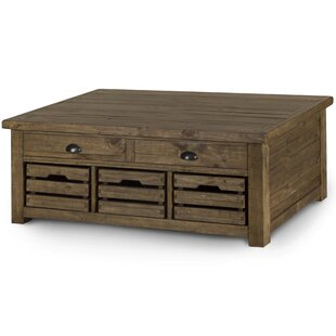 Senoia Lift Top Cocktail Table with Storage