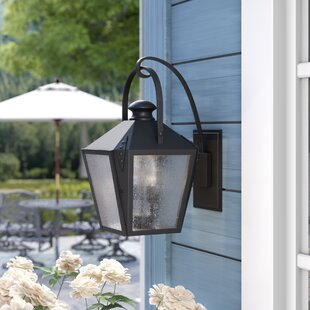 Darby Home Co Ibarra 2-Light Outdoor Wall Lantern