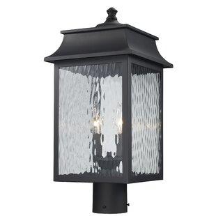 Alcott Hill Ericsson 2 Light Lantern Head