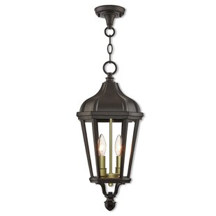 Affordable Price DeMotte 3-Light Outdoor Hanging Lantern By Darby Home Co