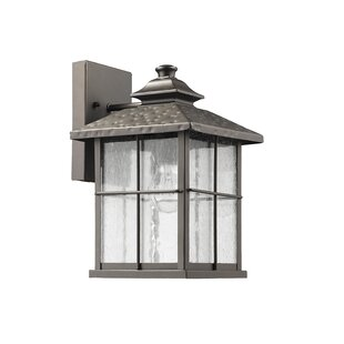 Boody 1-Light Outdoor Sconce