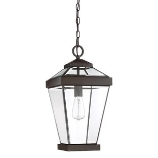 Affordable Price Lauren 1-Light Outdoor Hanging Lantern By Gracie Oaks