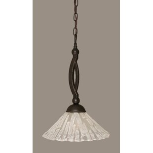Eisenhauer 1-Light Cone Pendant by Red Barrel Studio