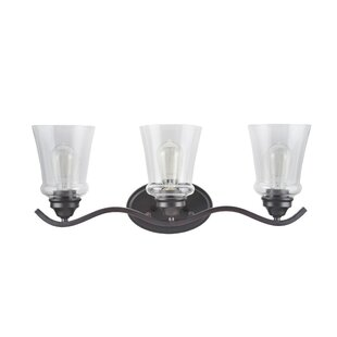 Gracie Oaks Linkwood Transitional Metal 3-Light Vanity Light