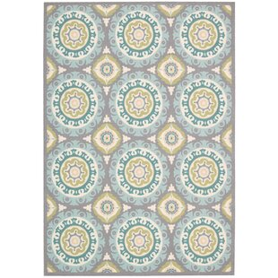 Sun N Shade Solar Flair Indoor Outdoor Area Rug By Waverly