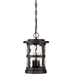 Atticus 2-Light Outdoor Hanging Lantern