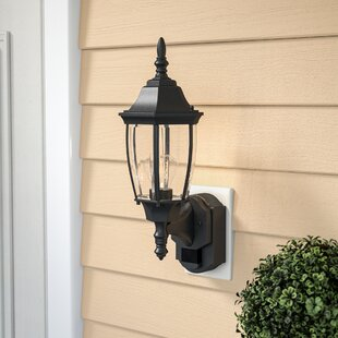 Lakeside 1-Light Contemporary Outdoor Sconce