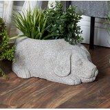 Indoor Outdoor Terracotta Urns Statues You Ll Love In 2021 Wayfair