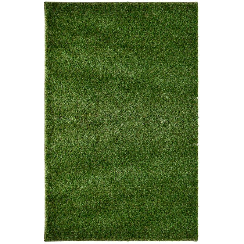 Imagine Rugs Green Indoor/Outdoor Area Rug & Reviews   Wayfair