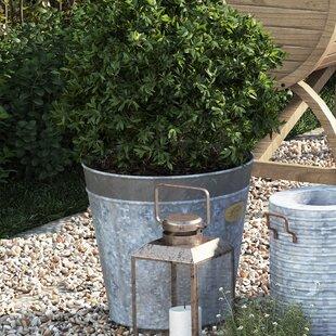 Zinc Planter | Wayfair.co.uk on zinc trough planter, zinc planter trays, zinc finish,