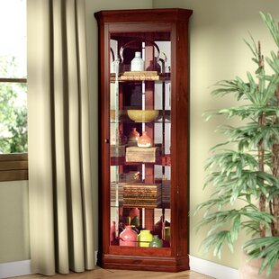 North Palisade Lighted Corner Curio Cabinet by Loon Peak