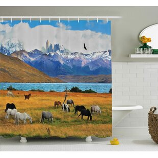 Banjo Farm Horse Shower Curtain + Hooks