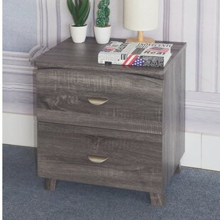 Distefano Spacious 2 Drawer Nightstand by Latitude Run