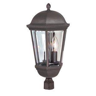 Oakhill 3-Light Bronze Lantern Head by Charlton Home