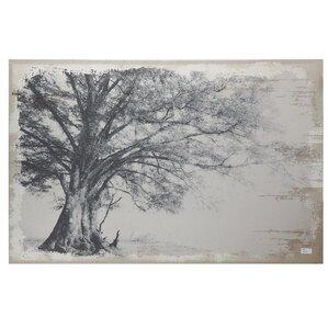 Maple Canvas Print