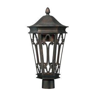 Top Reviews Dark Sky Outdoor 1-Light Lantern Head By Capital Lighting