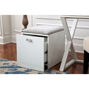 Ebern Designs Act 1-Drawer Mobile Vertica..
