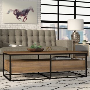 Brayden Studio Hughey Coffee Table with Storage